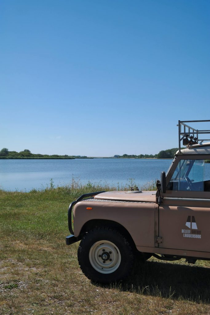 Jeep Safari im Nationalpark Lauwersmeer